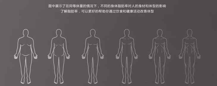 减脂肪的最快方法 不要盲目减肥教你几招最快降低体脂率的方法,快看看你做对了几个