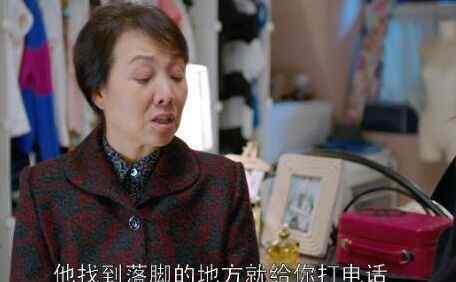 樊胜美父母 欢乐颂樊胜美父母妈妈谁演的_国家一级演员最强配角