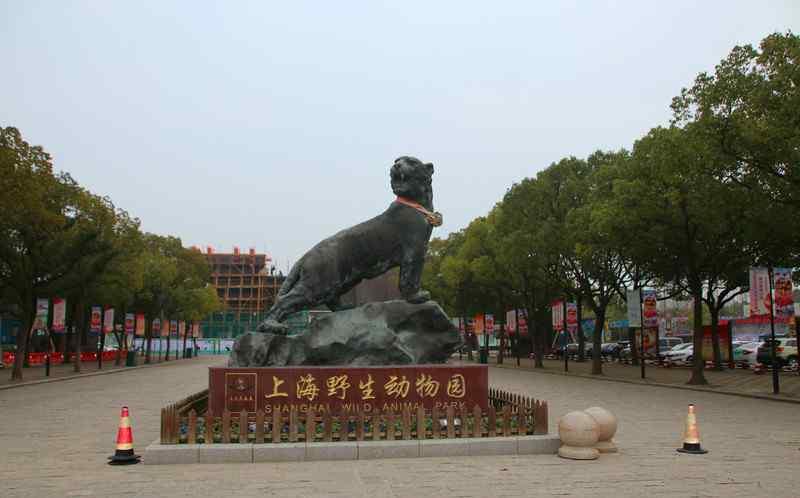 上海野生动物园地址 上海野生动物园超全攻略,这些动物你认识那几个?